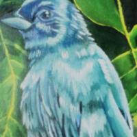 this painting consist of a bird that is known as the Indigo Bunting, in the background are various kinds of full grown leaves, in different shades of green