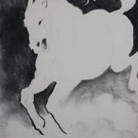 This is a charcoal drawing i made last summer.We had a huge forest fire that lasted for 3 weeks and burned thousands of acres.A neighbor lost three of her horses.I made a series of horse drawings that depict the tragedy of this loss and all the wildlife a