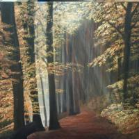 a woodland pathway, with thew autumn rays shining through