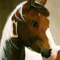 A portrait of my own filly, Chianti (or Chia).