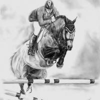 Hickstead was an iconic stallion in Canada and was taken away from us too soon. I drew this in memory of him.