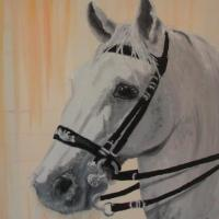 Oilpainting on canvas from a lippizan horse portrait with special bridle, painted 2004