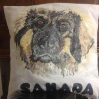 Hand painted pet cushion for a customer in fabric paint