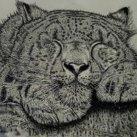 Recent oil painting of my favourite big cat fast asleep