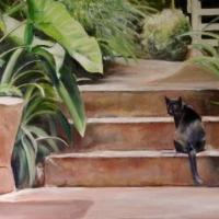 Blackie, the cat, is a fixture in Makawao, Maui, HI  After a friendly hello, he retreats to the garden.