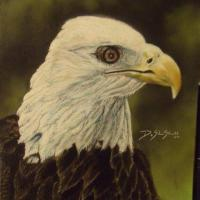 Another Eagle Piece....