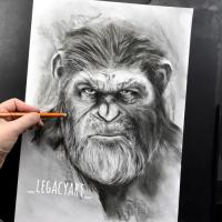 Personal fanart of Caesar from planet of the apes